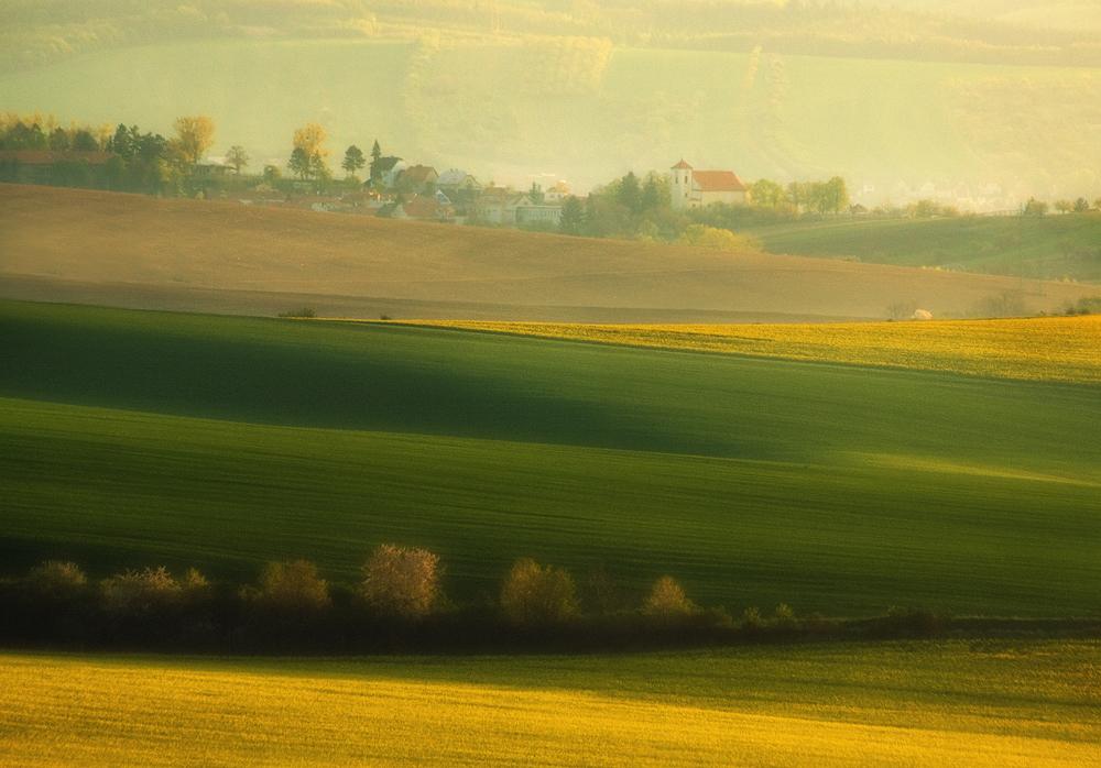поля Моравії